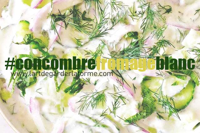 Recette #concombreFromageBlanc